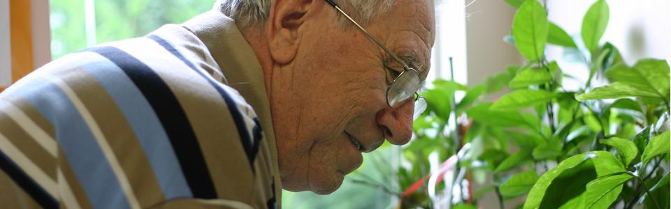 mötesplatser för äldre i vårgårda